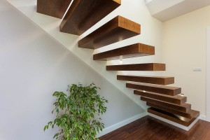 Bright space - stairs and plant